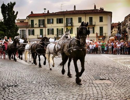 """Festa e Fiera di San Savino 2018 – Resoconto riunione """"Attacchi Atipici"""""""