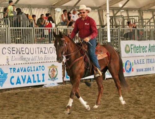 """Cavalli e Cavalieri nel Canavese"": Mattalia Horsemanship"