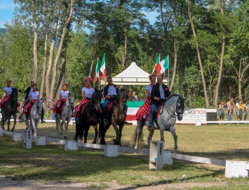 """Cavalli e Cavalieri nel Canavese"": Team Pegaso"